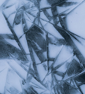 Ice Bamboo