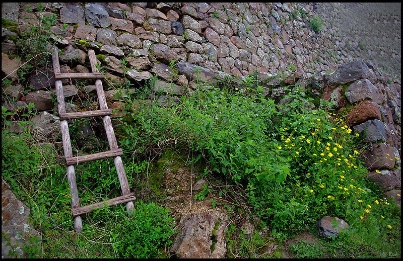 Pisac Ruins