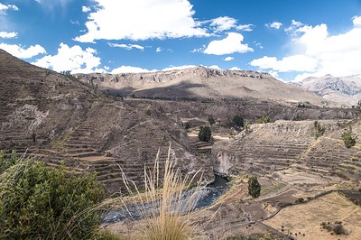 Colca Canyon and terrace farms, Peru