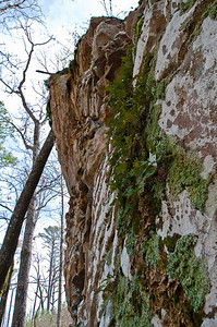 Arkansas-Petit Jean 032509-13