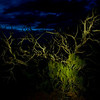 This is about a 12 second exposure painted with a flash light.