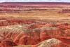 10.  A Painted Desert