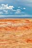 7.  Painted Desert