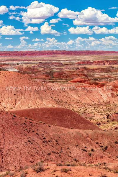 4.  Painted Desert