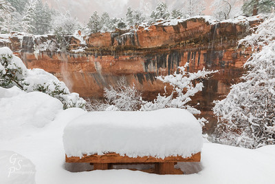 Snowy Zion Bench