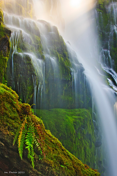 Lower Proxy Falls: Oregon