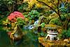 Japanese Garden 6