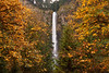 Fall colors at Multmonah Falls.