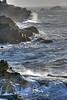 Rugged coastline at Shore Acres along the southern Oregon coast.