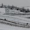 Winter landscape near Roman, Romania