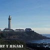 pigeon point lighthouse( what it looks like during the day)