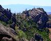 Pinnacles National Park (30)