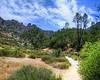 Pinnacles National Park (3)