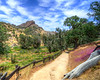 Pinnacles National Park (4)