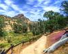 Pinnacles National Park (4)