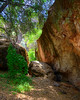 Pinnacles National Park (7)