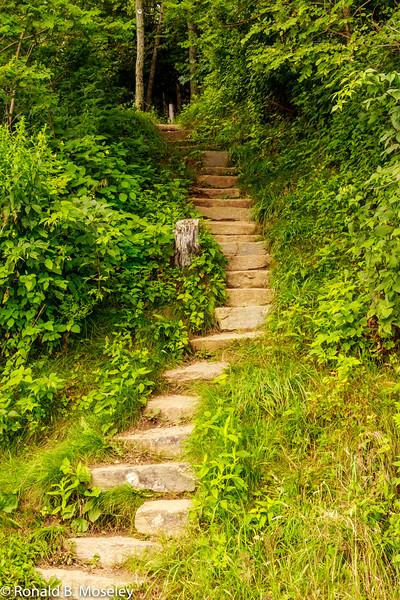 A Pisgah pathway