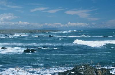 The Ocean Blue