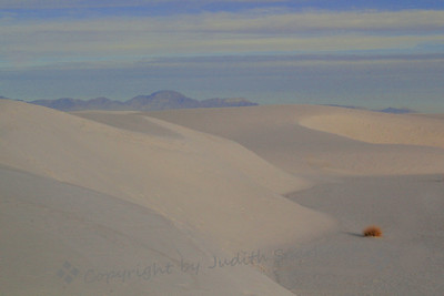 Pastel Morning in the Dunes ~ A soft look at White Sands National Monument, with dune after dune extending into the distance.