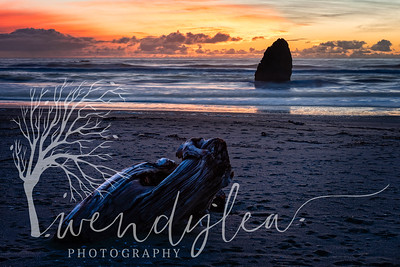 wlc Oregon Coast 032019 2942019-Edit