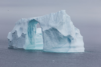 Iceberg, Cape Spear Newfoundland, June 2014