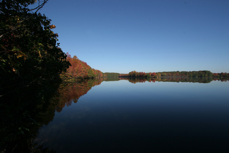 Plainsboro Nature Preserve