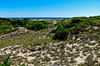 Plum Island, Parker NWR, Newberryport MA, 7/31/10
