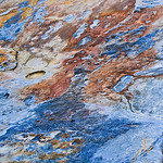 Rock Textures in Point Lobos, #3