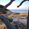 South Point from Cypress Grove Trail, Point Lobos Morning: all the moods of a single morning at what is perhaps the most amazing patch of coast in the world.