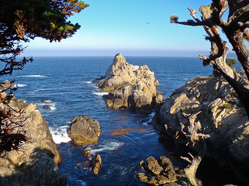 The Pinnacle from North Trail: Point Lobos Morning: all the moods of a single morning at what is perhaps the most amazing patch of coast in the world.