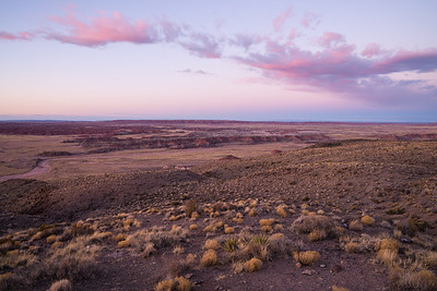 Petrified Forest N.P.-0944