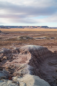 Petrified Forest N.P.-0901