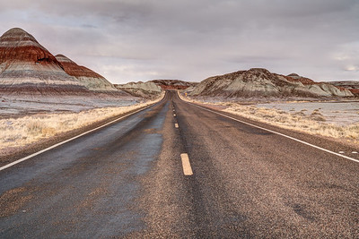 Petrified Forest N.P.-22