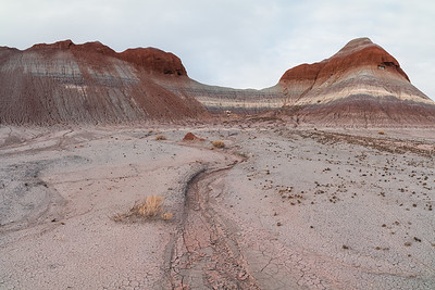 Petrified Forest N.P.-