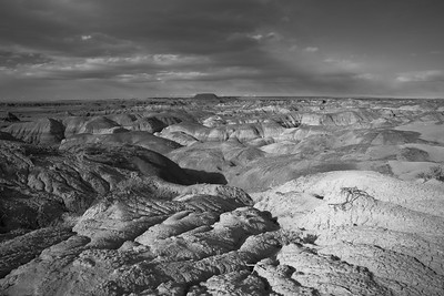 Petrified Forest N.P.-0898