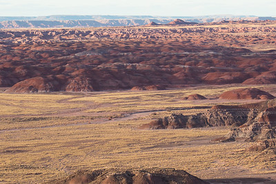 Petrified Forest N.P.-0365