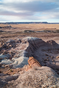 Petrified Forest N.P.-0906