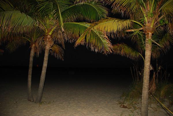 pompano beach (23)