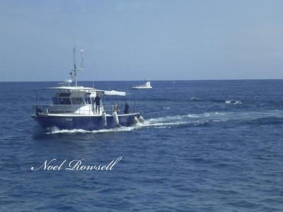 Agincourt Reef P1020392
