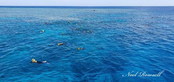 Agincourt Reef 20191207_143515