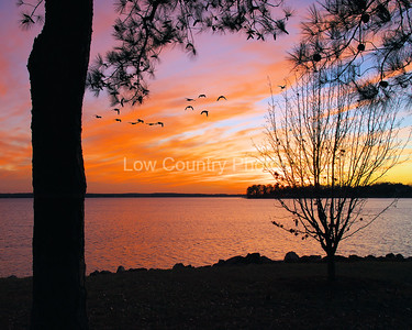 Lake Murray Enchanted Evening
