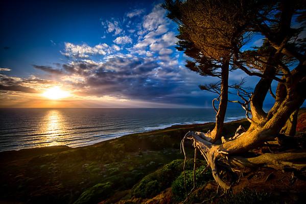 Northern Pacific Coast, California
