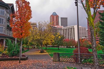 View Portland Waterfront
