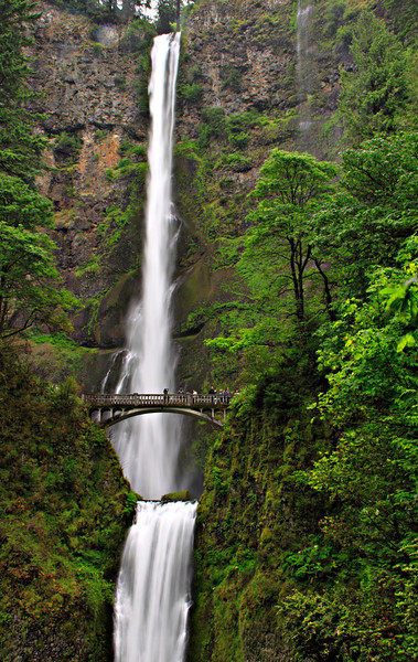Multnomah Falls, Columbia River Highway