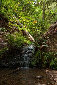 Tiptoe Falls, Portola Redwoods State Park
