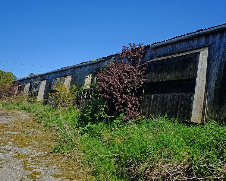 Derelict Battery Farm