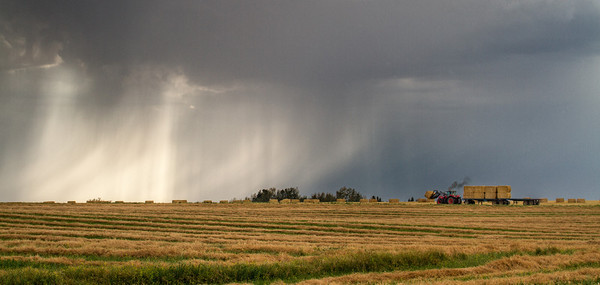 Bringing in the hay before a storm hits. HWY 27, west of Torrington, Sunday September 9, 2012.