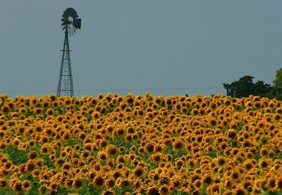 Sunny Windmill, near Holton, Kansas
