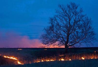 Prairie Burn, Flint Hills, near Topeka, Kansas