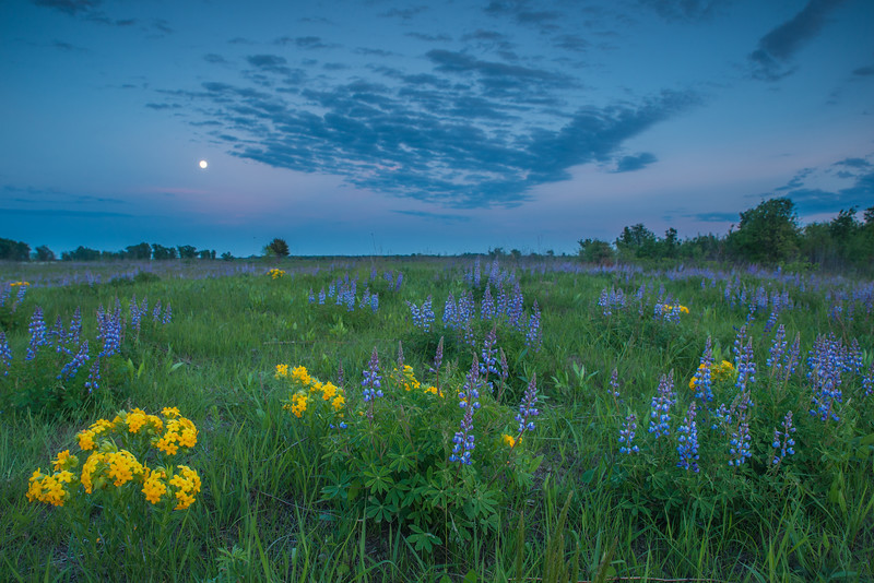 Full Moon over the prairie